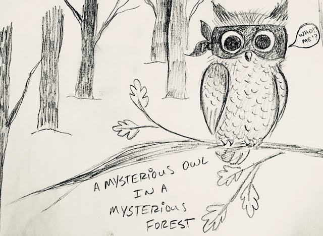 A Mysterious Owl in a Mysterious Forest
